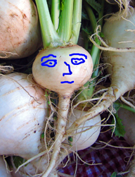 worried turnip